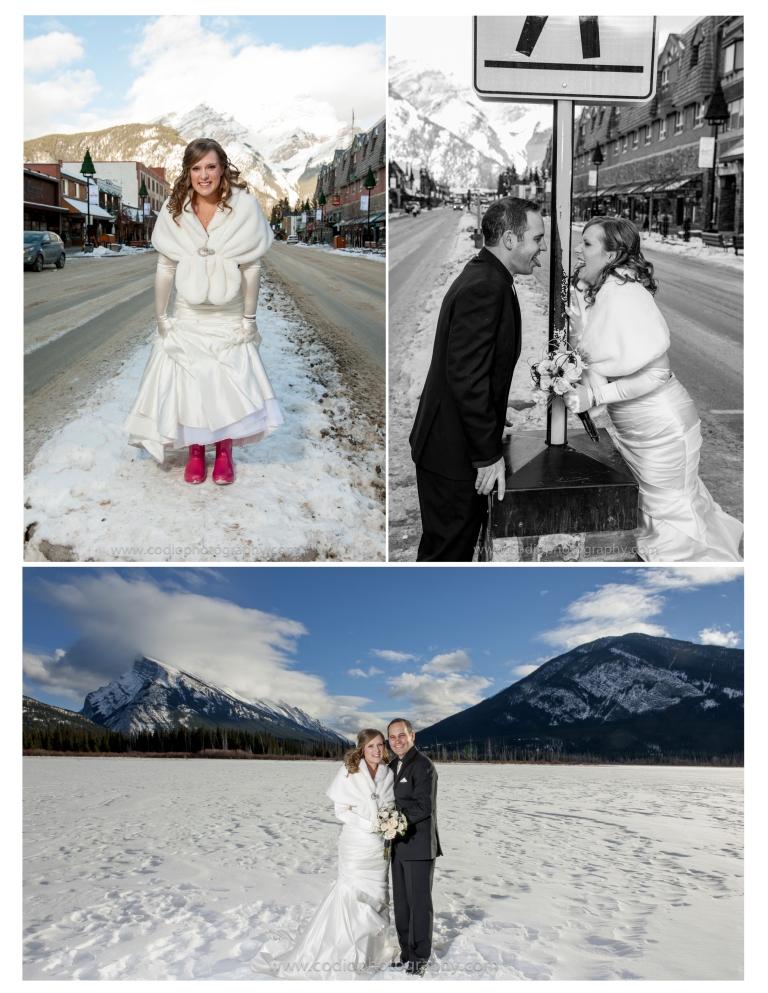 Formal wedding mountain photo