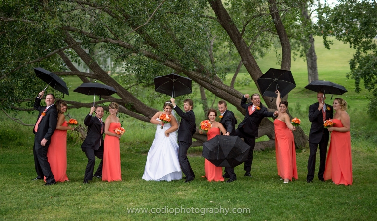 Wedding Party Rain