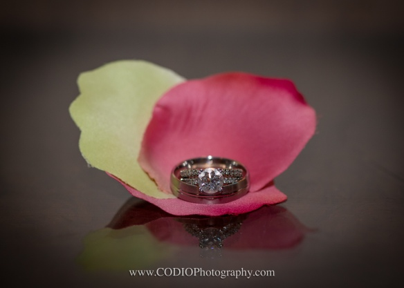 Wedding Rings CODIO Photography